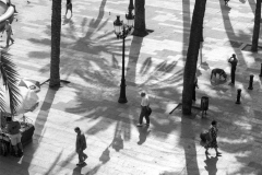 Placa Reial Barcelona, Shadows Vertical