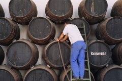 Jerez, The Story of Sherry, The Observer
