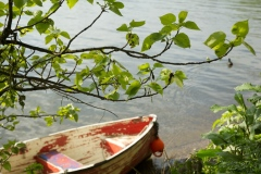 Rowing boat, Twickenham, Thames Series